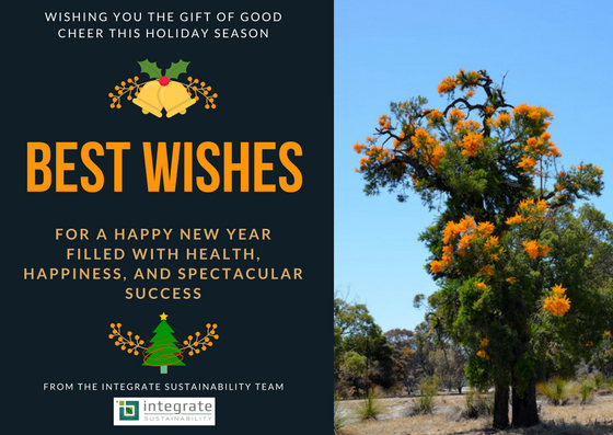We wish you a Sustainable Christmas and a Happy New Year
