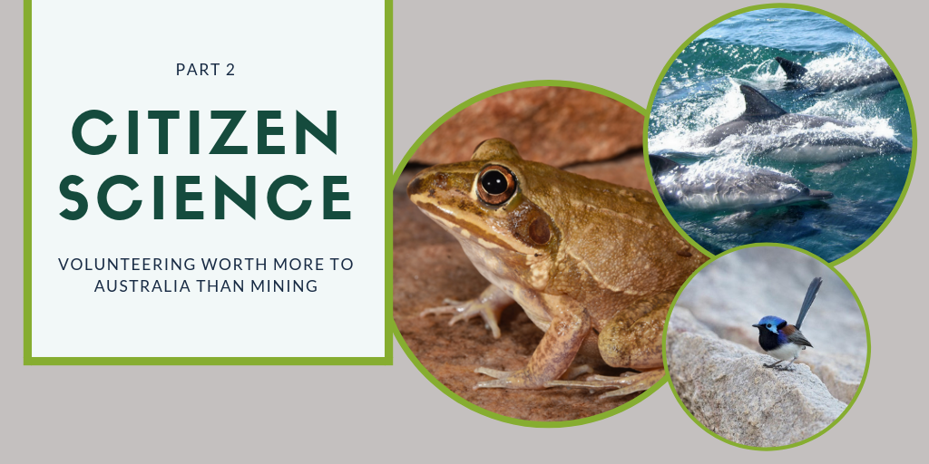 CITIZEN SCIENCE – PART 2: Volunteering Worth More to Australia than Mining