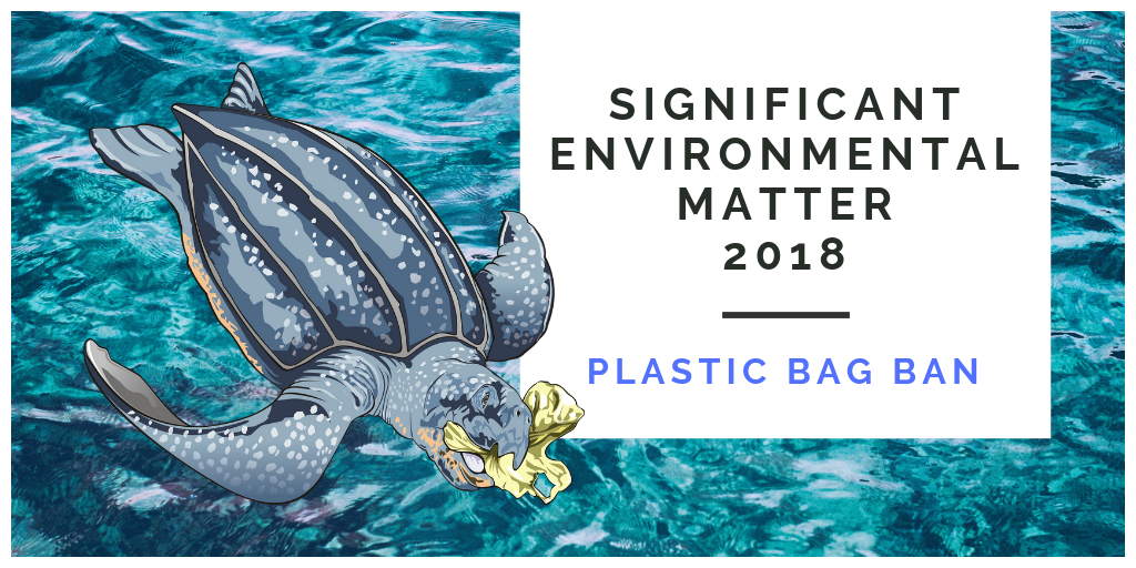 SIGNIFICANT ENVIRONMENTAL MATTER 2018 – Plastic Bag Ban