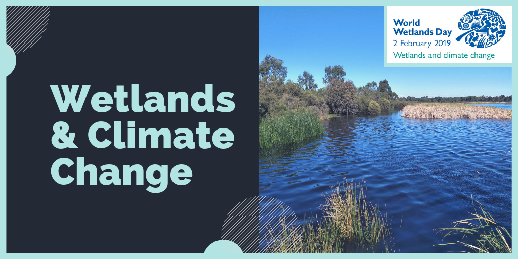 Wetlands & Climate Change