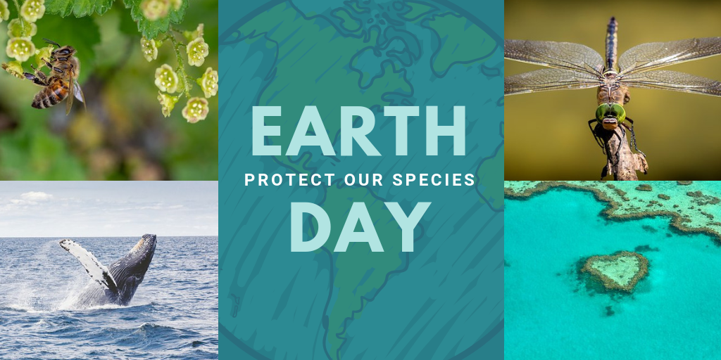 Earth Day 2019 – Protect Our Species