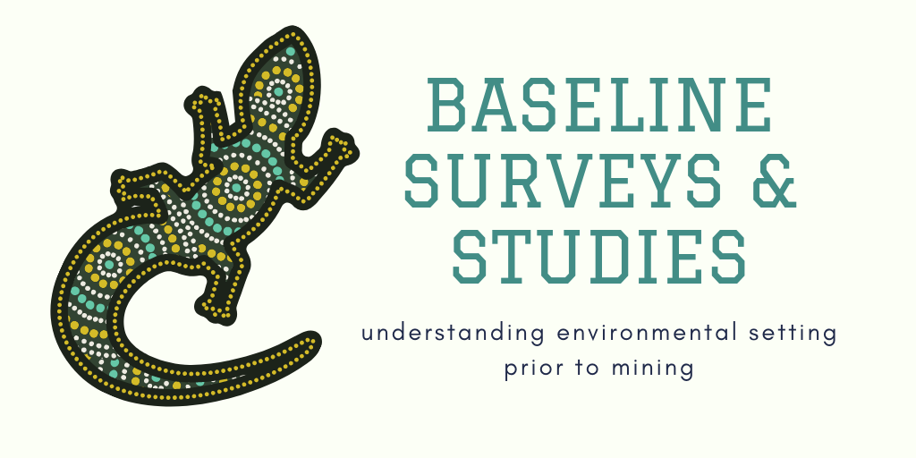 Baseline Surveys and studies – understanding environmental setting prior to mining