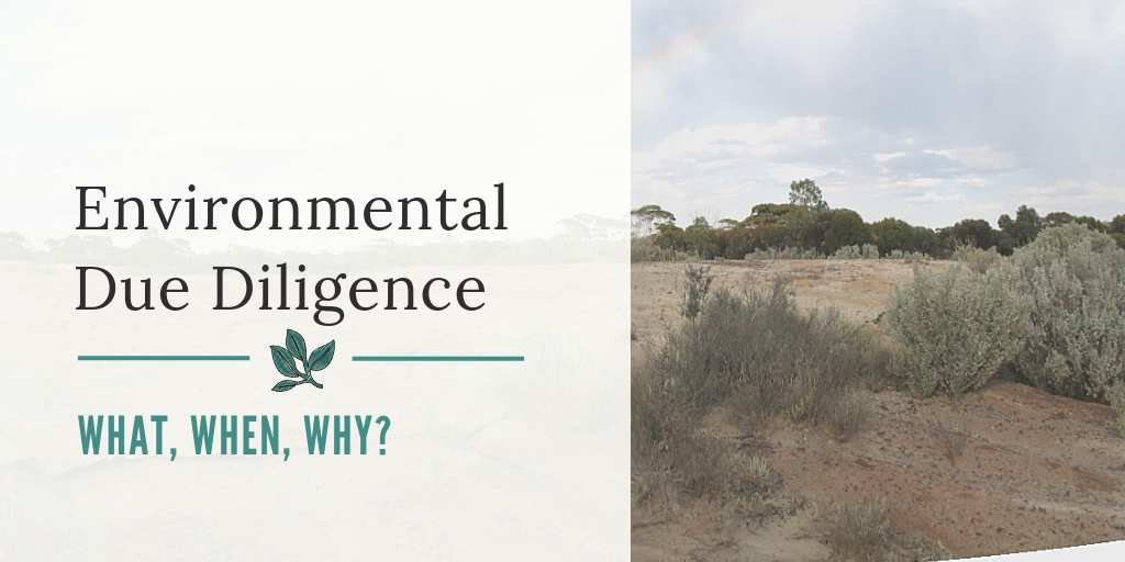 Environmental Due Diligence – What, When, Why?
