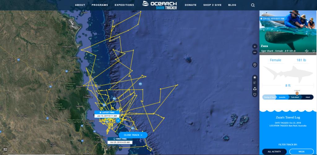 Ocearch Tracker