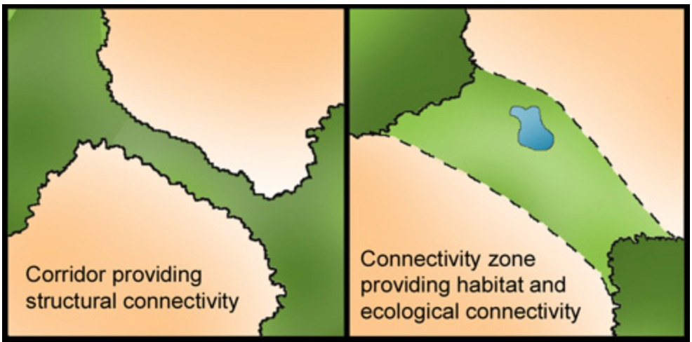 Connectivity Zone