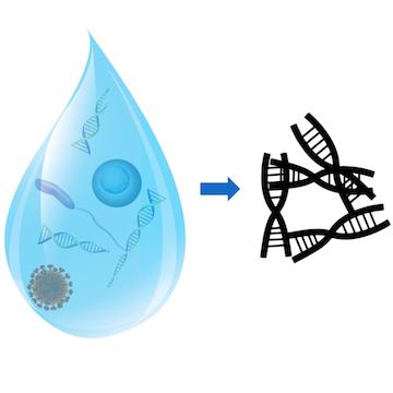 eDNA in water
