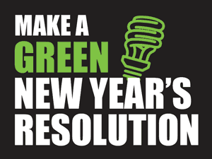Sustainable New Years Resolution