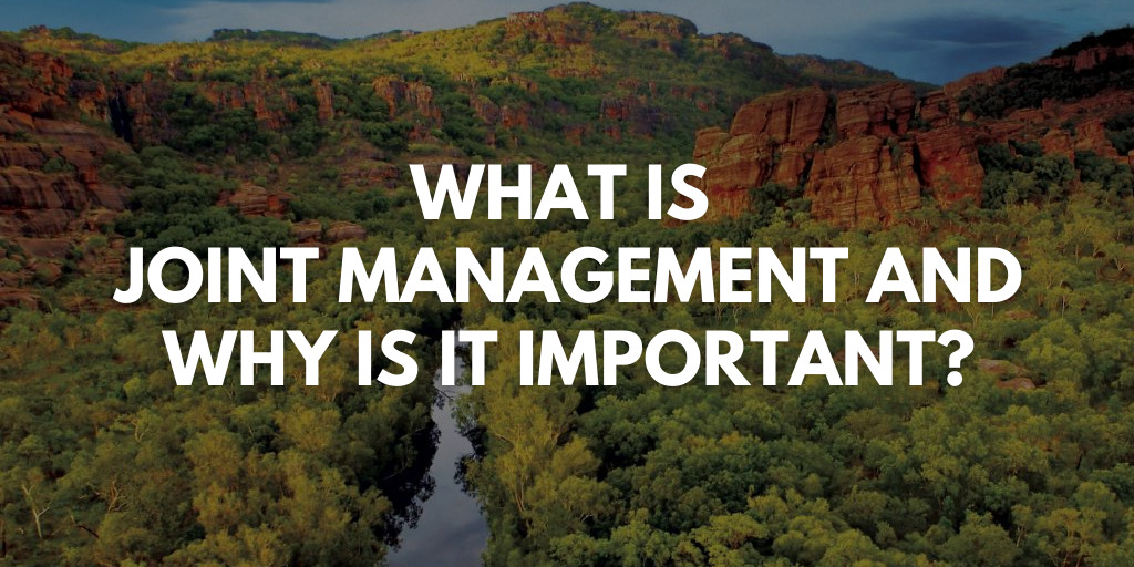 Kakadu and Joint Management in a nutshell